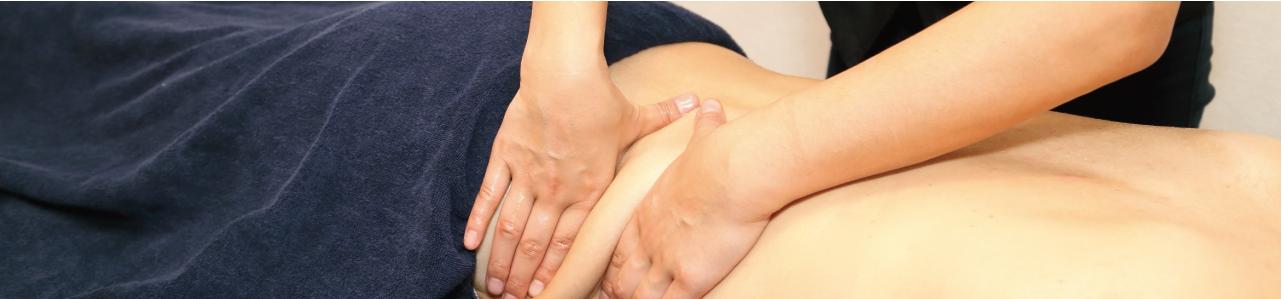 kokkaku_taishitu_rinpa_image01